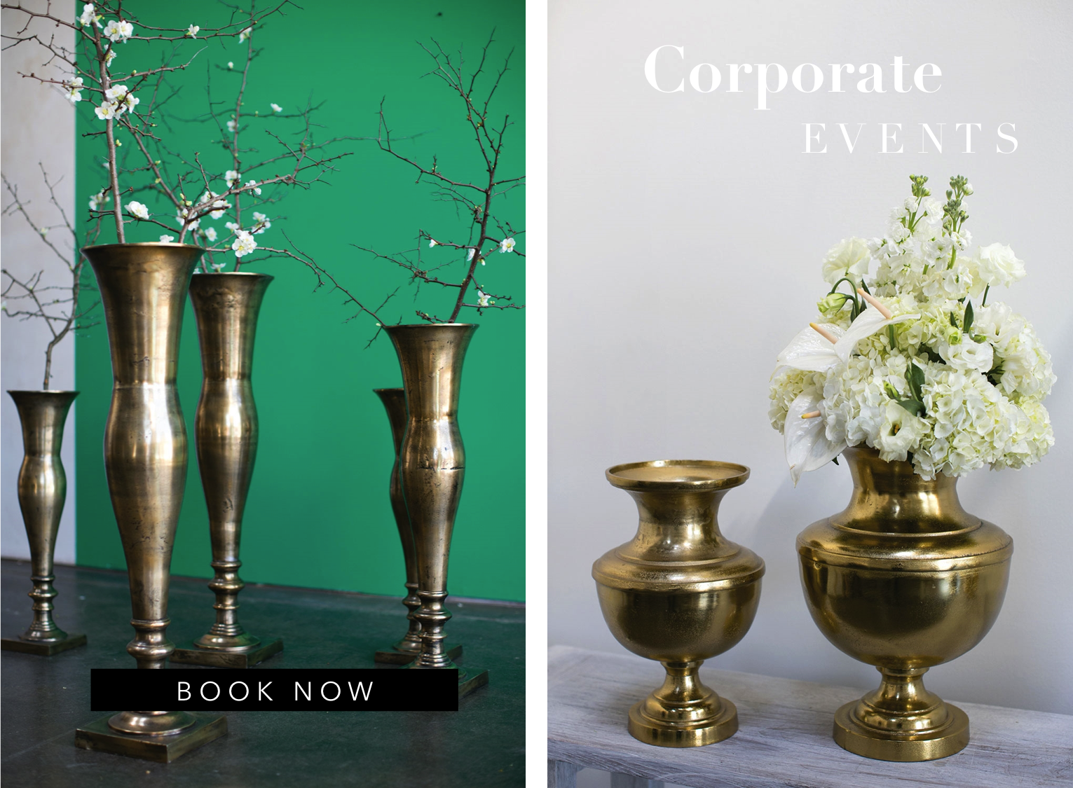 event-rentals-angies-79912-floral-designs-party-rentals-wedding-rentals-chairs-linens-vases-wedding-el-paso-bodas-rentas-de-eventos-79912-flowershop-bridal-shop-event-angies-flower-destination-corporate-event.png